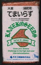 緑肥 てまいらず(イネ科)1kg カネコ種苗株式会社