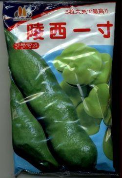 野菜種 そら豆陵西一寸  230粒みかど協和のたね