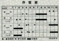 野菜種ねぎ夏扇4号コート種6000粒サカタ交配