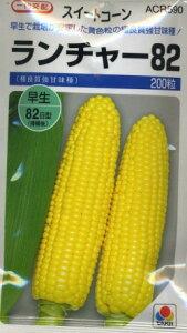 とうもろこしランチャー82200粒 タキイ種苗