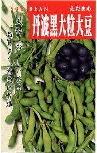 枝豆 丹波の黒大粒大豆 50ml タカヤマシード