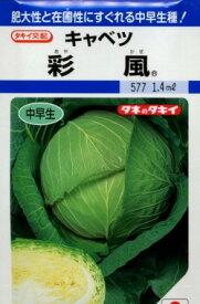 キャベツ彩風 1.4ml タキイ交配
