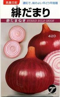 野菜種たまねぎ緋だまり4ml高農交配
