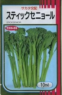 野菜種ブロッコリースティックセニョール10mlサカタ交配