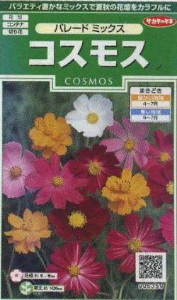 花の種 オール1割引き! コスモスパレードミックス 小袋 サカタのタネ