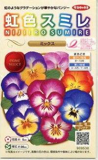 花の種オール1割引き!虹色スミレミックス0.1mlサカタのタネ