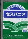 緑肥 セスバニアロストアラータ(マメ科)1kg カネコ種苗