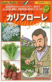 イタリア野菜カリフローレ 50粒 トキタ種苗