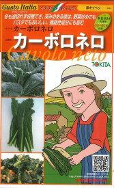 イタリア野菜カーボロネロ40粒トキタ種苗