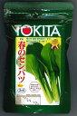 小松菜春のセンバツ 2dlトキタ種苗