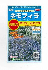 花の種景観用ボリュームパックネモフィラインシグニスブルーサカタのタネ