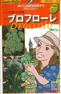 イタリア野菜ブロフローレ50粒トキタ種苗