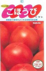 トマトごほうび 100粒サカタのタネ