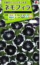 花の種 ネモフィラ ペニーブラックタキイ交配