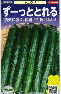 野菜種キュウリずーっととれる小袋サカタ交配食彩