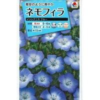 花の種オール1割引き!ネモフィラインシグニスブルー1ml