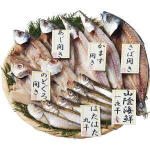 山陰海鮮一夜干しセット 1852-35【日本産 国産 干物セット 詰め合わせ つめあわせ 贅沢 おいしい 美味しい うまい お取り寄せ グルメ 】
