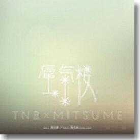 """ザ・なつやすみバンド / 蜃気楼 (7"""")"""