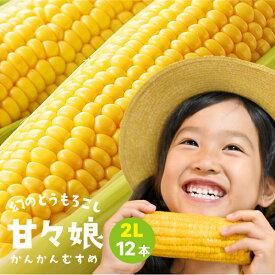 静岡県産とうもろこし 甘々娘(かんかんむすめ)2Lサイズ12本入り ご家庭用 期間数量限定【送料無料】