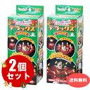 送料無料 ドリームキャンドルデラックス(クリスマス用)×2個セット  花火 キャンドル サプライズ ドリームサプライ