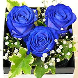 2020 父の日 青いバラ ブルーローズ 奇跡の青い薔薇(バラ) フラワーボックス(ボックスフラワー)生花 アレンジメント【2020母の日ギフト】【花恭】【クール便】