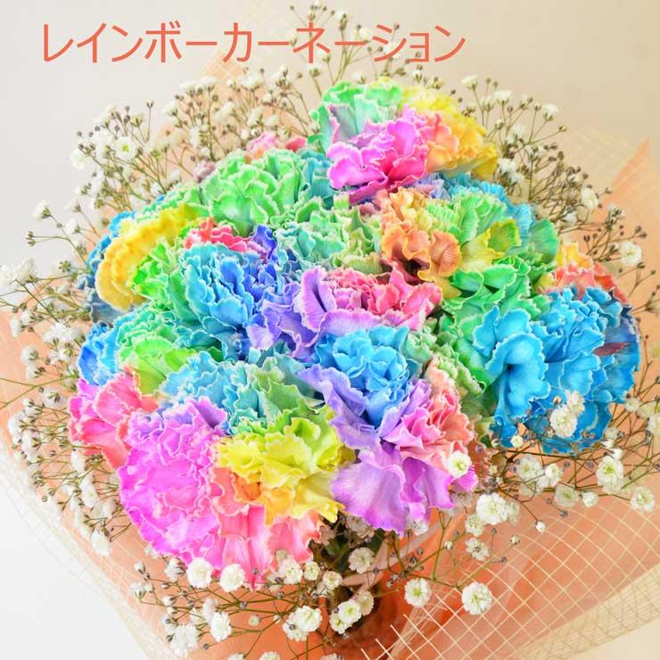 レインボーカーネーション 【本数指定 1本から】虹色のカーネーションの花束を 母の日のプレゼント・ギフトに【母の日ギフト】