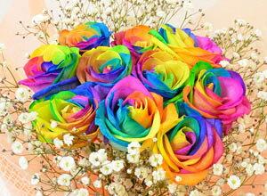レインボーローズ【本数指定 1本から】虹色の薔薇(バラ)の花束を プレゼント・ギフトに【花恭】【最安値に挑戦】【クール便】【2020母の日ギフト】【バースディギフト】