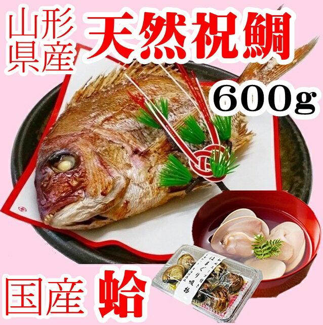 お食い初め 鯛 はまぐり セット 600g 送料無料 敷紙 鯛飾り 天然真鯛 焼き鯛 お祝い 料理 蛤 祝鯛 冷蔵