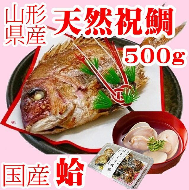 お食い初め 鯛 はまぐり セット 500g 送料無料 敷紙 鯛飾り 天然真鯛 焼き鯛 お祝い 料理 蛤 祝鯛 冷蔵