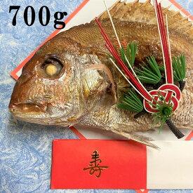 お食い初め 鯛 700g 山形県産 天然 真鯛焼き 敷き紙 飾り 冷蔵 節句 100日祝い 祝い鯛 焼鯛 焼き鯛 塩焼き 真鯛 鮮魚 お祝い 海鮮 令和