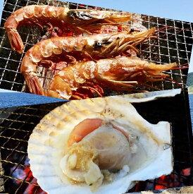海鮮バーベキュー ホタテ・特大赤エビセット 2種20品 冷凍 片貝ホタテ10枚 天然特大赤エビ10尾
