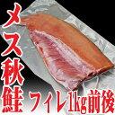 訳あり 秋鮭 メス フィレ1kg前後 山形県産 生冷凍 鮭 半身
