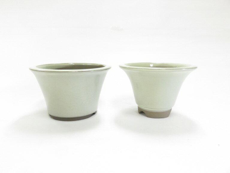 瀬戸焼 丸反型小鉢 クリーム4号セット 盆栽鉢 ミニ盆栽 A04-8