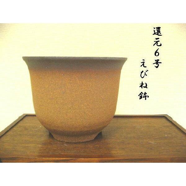萬古焼 えびね鉢 還元黒吹6号 山野草鉢 根が張りやすく、通気がよい、植物に合わせやすい鉢です。