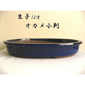 瀬戸焼 オカメ小判 生子12号 松竹梅 盆栽鉢