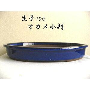 瀬戸焼 オカメ小判 生子13号 松竹梅 盆栽鉢