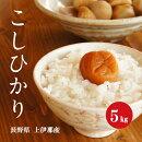 お米長野県上伊那産コシヒカリ1等白米5kg