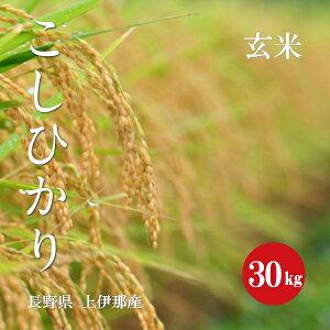 長野県産 こしひかり 上伊那産 1等米 令和2年産 玄米 30kg 【新米】【送料無料】