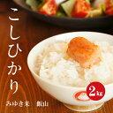 長野県産 コシヒカリ 幻の米 飯山みゆき米 特A1等米 令和2年産 白米 2kg 【新米】【送料無料】