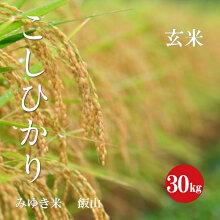 幻の米飯山みゆき米コシヒカリ1等玄米30kg