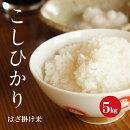 「はざ掛け米」長野県産こしひかり1等米白米5kg