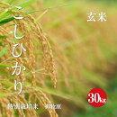 長野県産コシヒカリ特別栽培米1等玄米30kg