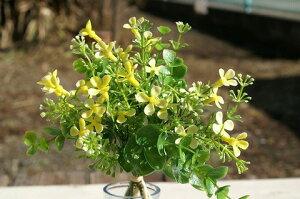 ユーカリミックスピック イエロー 造花 カントリー country 造花