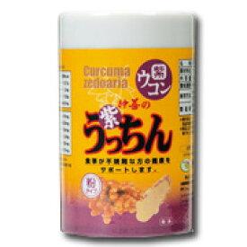 【GET!沖縄仲善 紫うっちん粉 100g】紫ウコン・ガジュツ