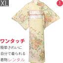 【レンタル】訪問着 レンタル トールサイズ「XLサイズ」クリーム色 菊・光悦垣 Japan Style 着物+袋帯 セット 着付け簡単 ワンタッチ着…