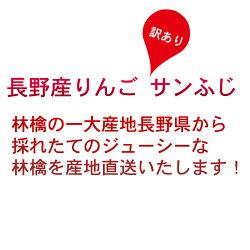 【信州産】訳ありサンふじりんご10kgお取り寄せフルーツご家庭用リンゴ長野県産直