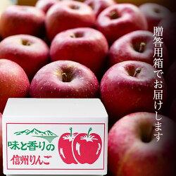 【信州産】りんご・サンふじ24〜28玉8kg贈答用秀品お歳暮ギフトフルーツ産直箱入り