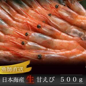 【送料無料】 日本海漁れたて直送 生甘えび500g入り 新潟県産■/本州のみのお届けとなります天候不順により水揚げがない場合は発送までお時間を頂きます。