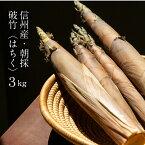 【信州産】朝獲れたけのこ破竹はちく【3kg】送料無料