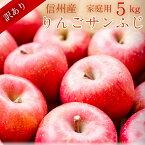 【信州産】訳ありサンふじりんご5kgご家庭用リンゴ長野県産直